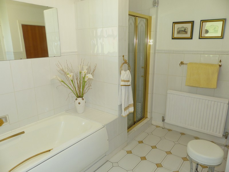 Family Bath & Shower Room